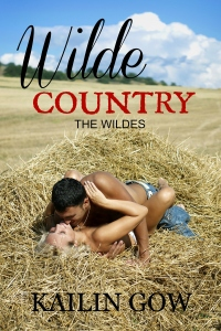 Wilde Country (The Wildes #1)